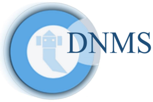 Business Integration Software DNMS Logo category